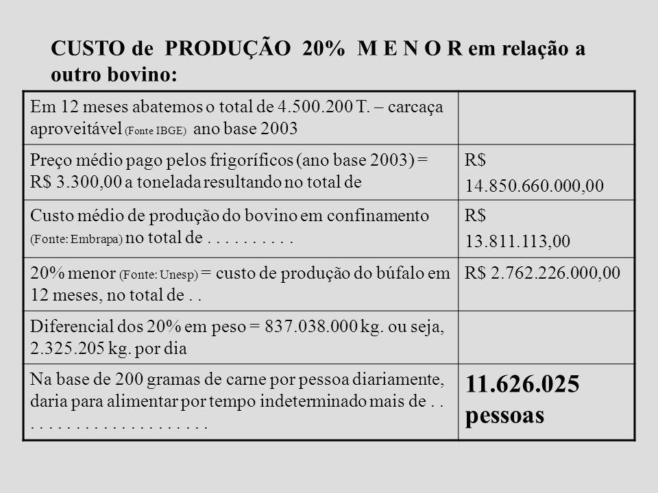 O que representa um custo de produção 20% menor? M U I T O D I N H E I R O