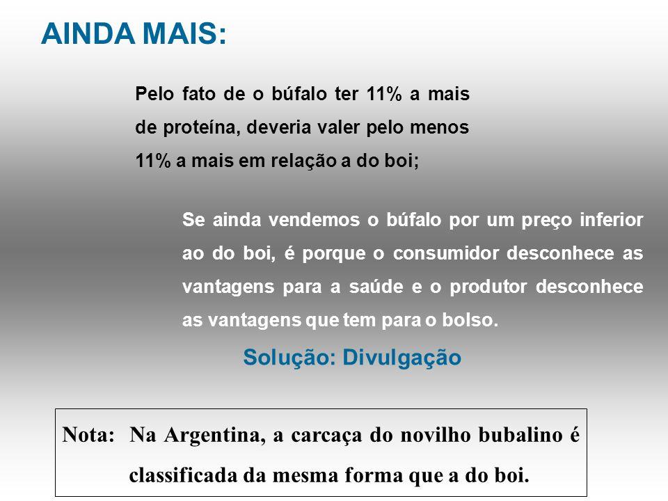 CONCLUSÃO: Búfalo + barato = mais lucro : Ainda que vendido um pouco mais barato que o boi, na maior parte do Brasil, mesmo assim dá mais lucro. Isto