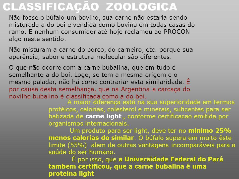 Conclusão: Porque sendo + lucrativo que o BOI, no Brasil há poucos búfalos? Porque os lideres da Nação, desconhecendo as vantagens do búfalo para a Ec