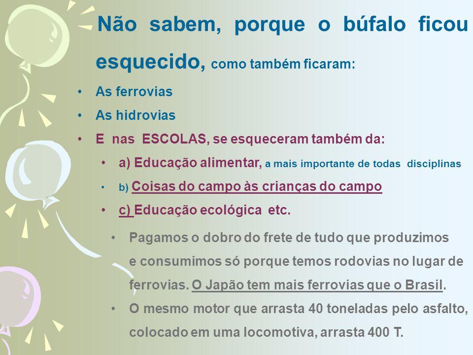 Não sabem, porque o búfalo ficou esquecido, como também ficaram: As ferrovias As hidrovias E nas ESCOLAS, se esqueceram também da: a) Educação alimentar, a mais importante de todas disciplinas b) Coisas do campo às crianças do campo c) Educação ecológica etc.