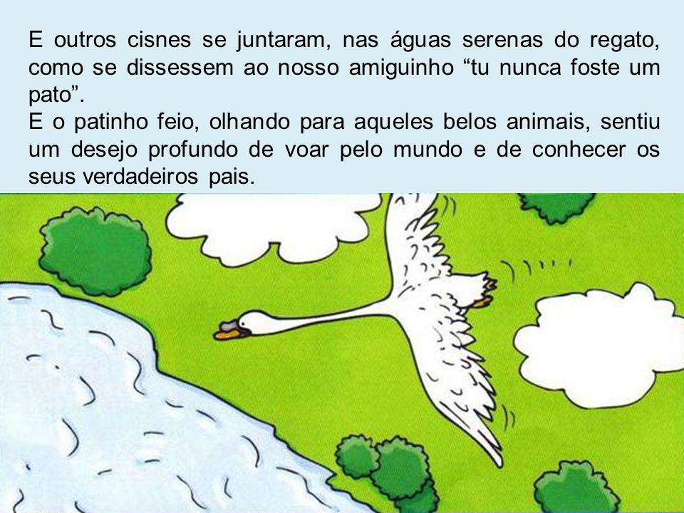 E outros cisnes se juntaram, nas águas serenas do regato, como se dissessem ao nosso amiguinho tu nunca foste um pato. E o patinho feio, olhando para