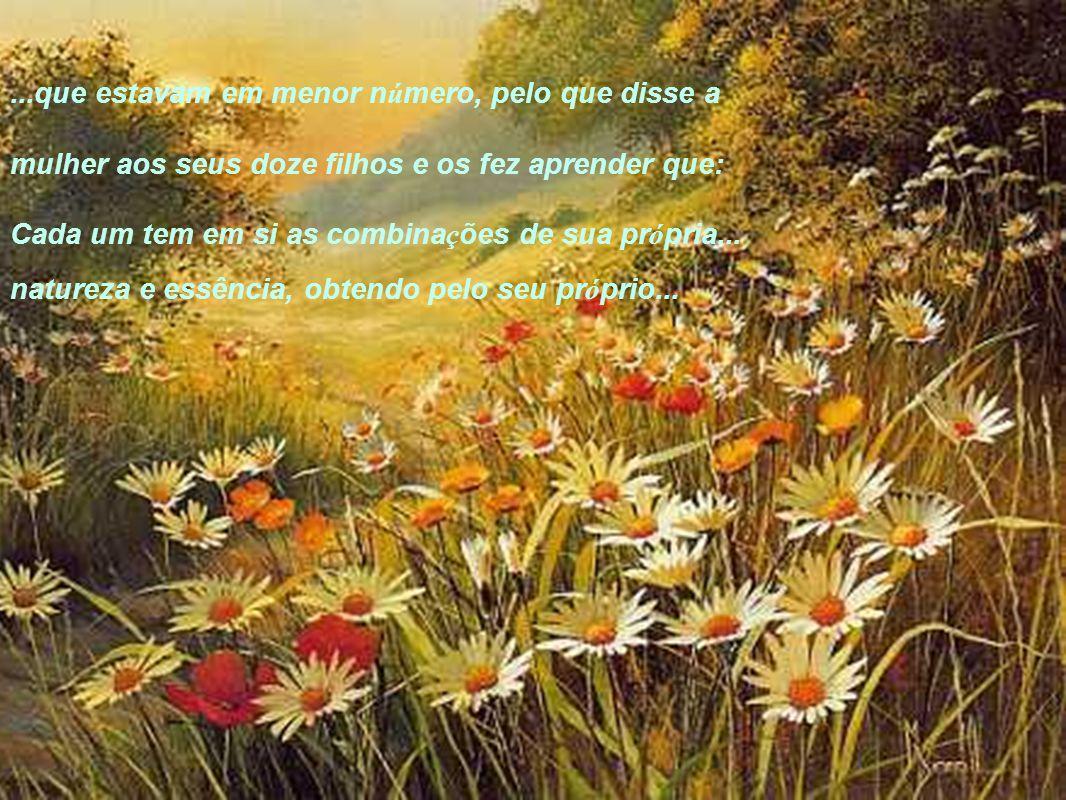 ...que estavam em menor n ú mero, pelo que disse a mulher aos seus doze filhos e os fez aprender que: Cada um tem em si as combina ç ões de sua pr ó pria...