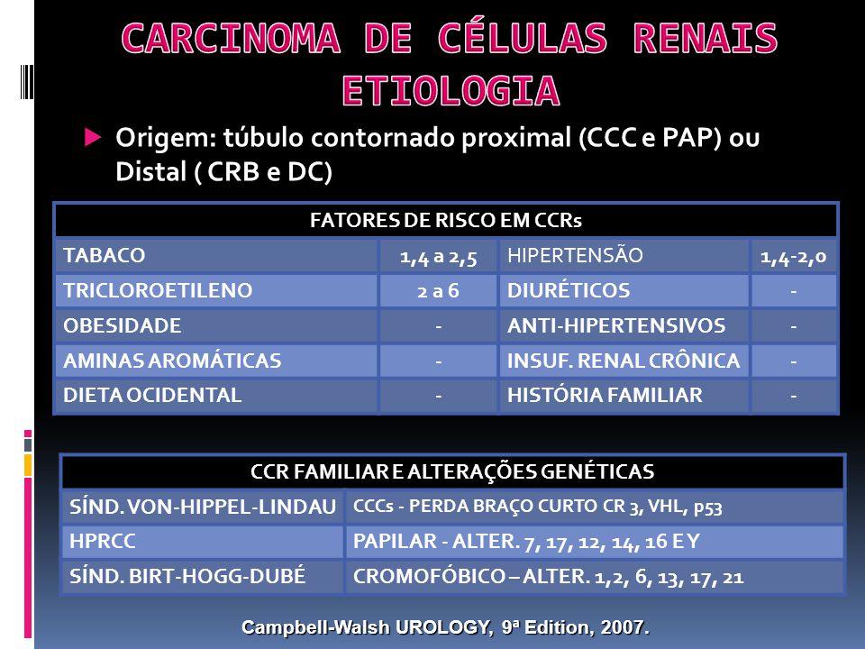 Origem: túbulo contornado proximal (CCC e PAP) ou Distal ( CRB e DC) FATORES DE RISCO EM CCRs TABACO1,4 a 2,5HIPERTENSÃO1,4-2,0 TRICLOROETILENO2 a 6DIURÉTICOS- OBESIDADE-ANTI-HIPERTENSIVOS- AMINAS AROMÁTICAS-INSUF.