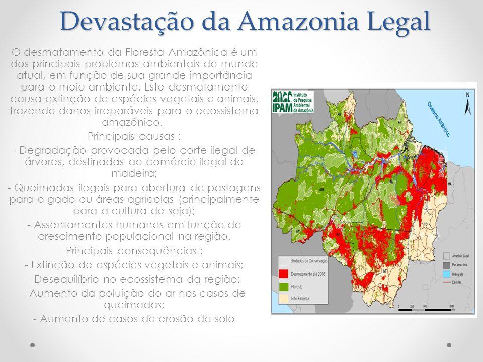 Devastação da Amazonia Legal O desmatamento da Floresta Amazônica é um dos principais problemas ambientais do mundo atual, em função de sua grande imp