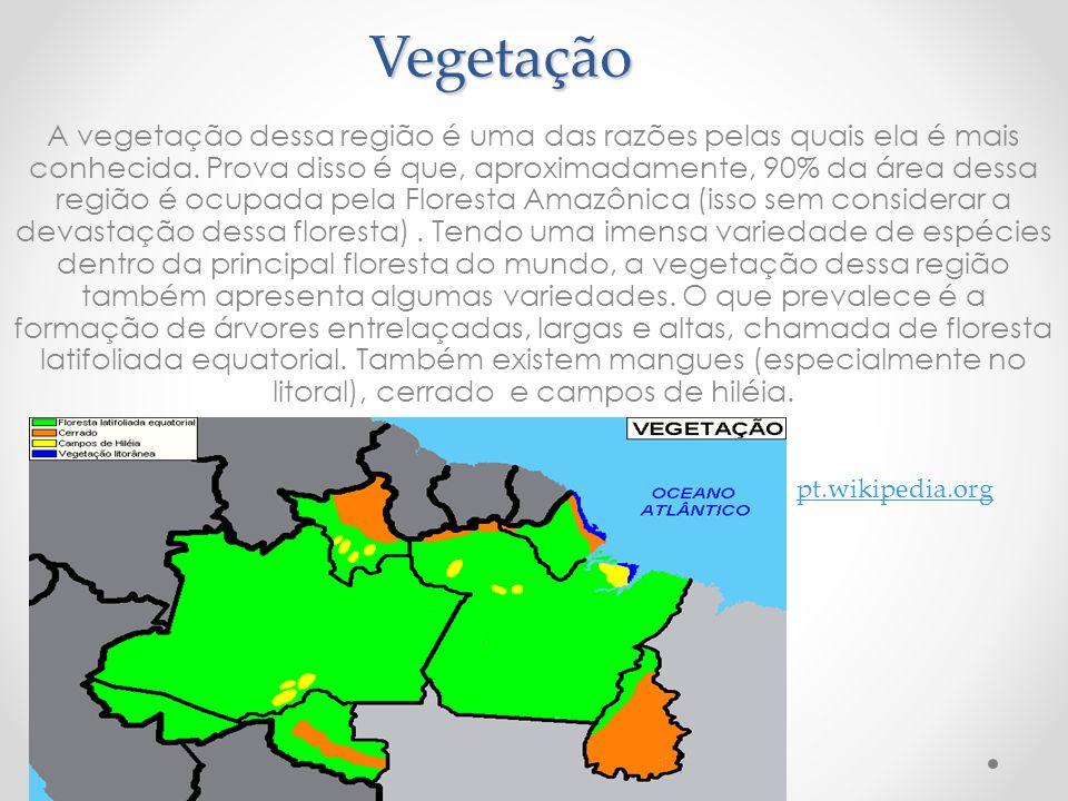 Vegetação A vegetação dessa região é uma das razões pelas quais ela é mais conhecida. Prova disso é que, aproximadamente, 90% da área dessa região é o
