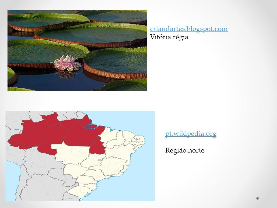 criandartes.blogspot.com Vitória régia pt.wikipedia.org Região norte