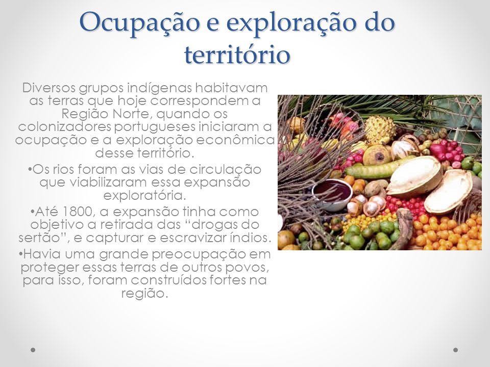 Ocupação e exploração do território Diversos grupos indígenas habitavam as terras que hoje correspondem a Região Norte, quando os colonizadores portug