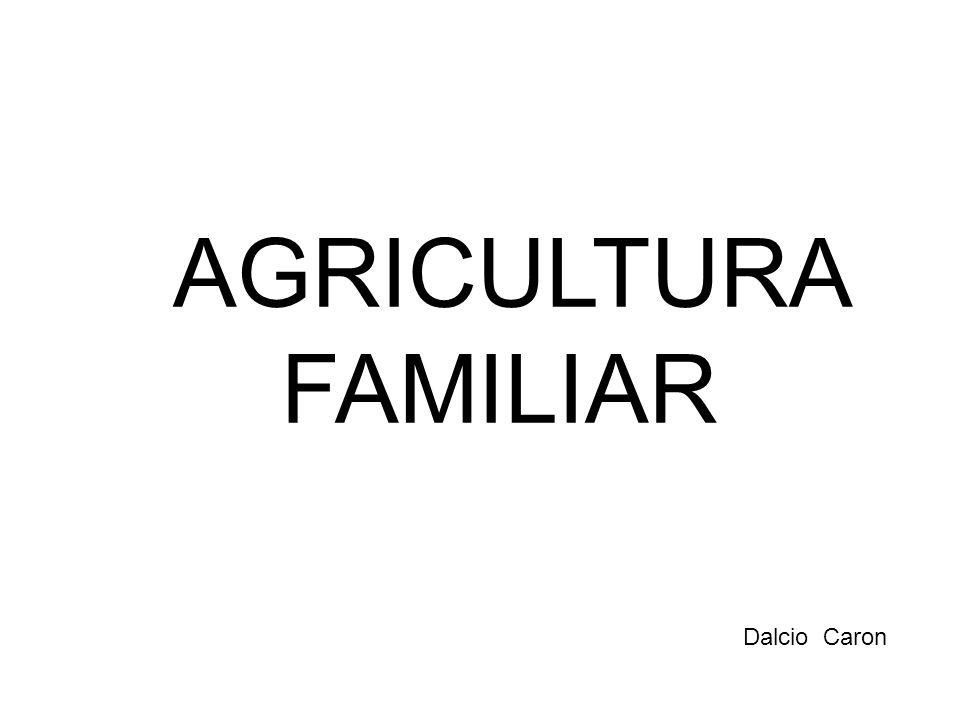 Dalcio Caron AGRICULTURA FAMILIAR
