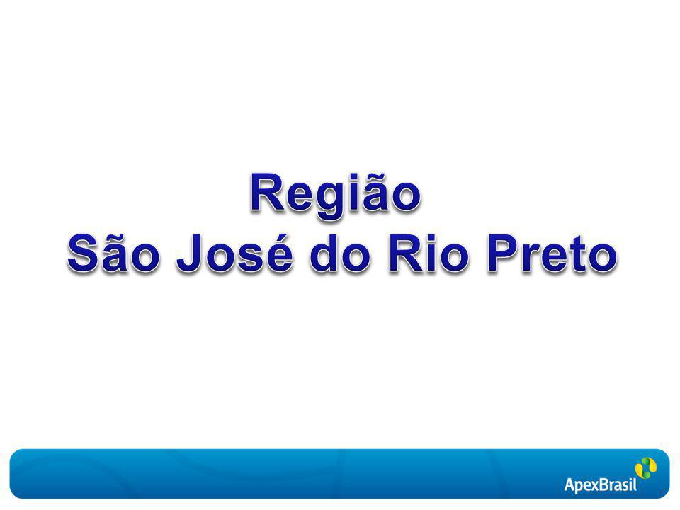 Atividade Exportadora da Região de São José do Rio Preto Empresas Exportadoras (2008) Fonte: MDIC.
