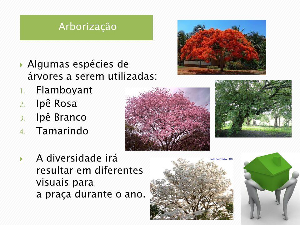 Arborização Algumas espécies de árvores a serem utilizadas: 1. Flamboyant 2. Ipê Rosa 3. Ipê Branco 4. Tamarindo A diversidade irá resultar em diferen