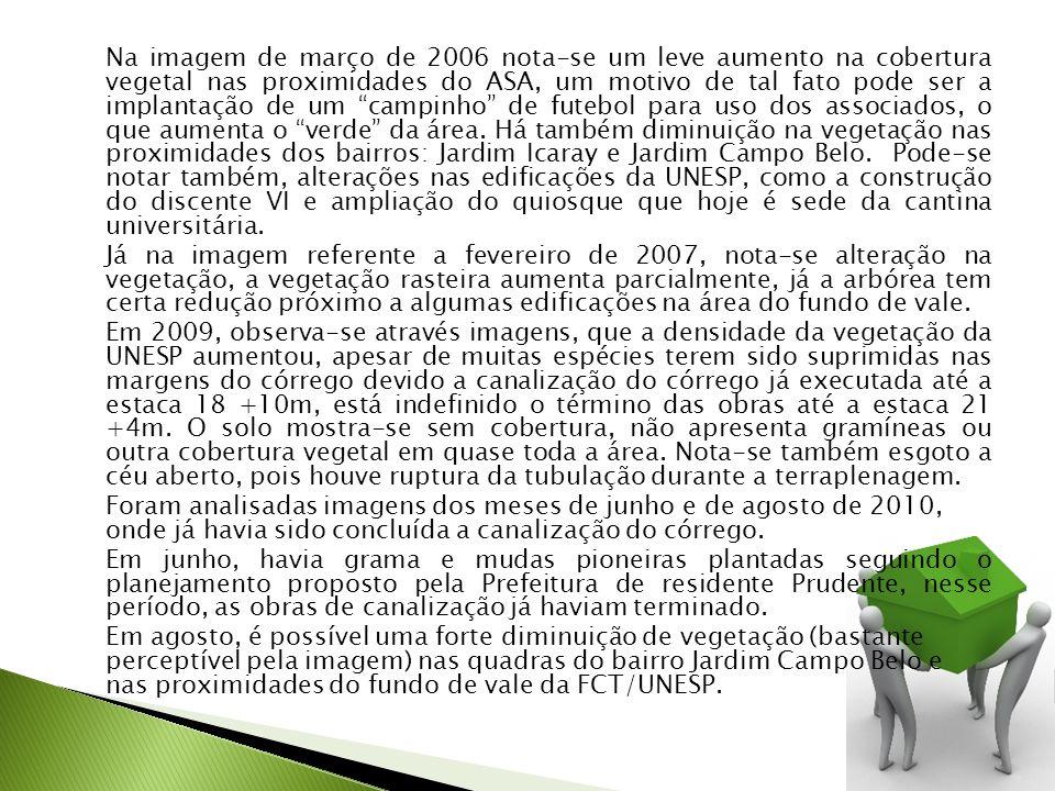 Na imagem de março de 2006 nota-se um leve aumento na cobertura vegetal nas proximidades do ASA, um motivo de tal fato pode ser a implantação de um ca