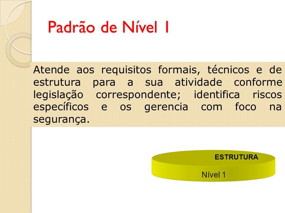 Aplicação dos Níveis 1 e 2 Nível 1 ESTRUTURA Nível 2 PROCESSO