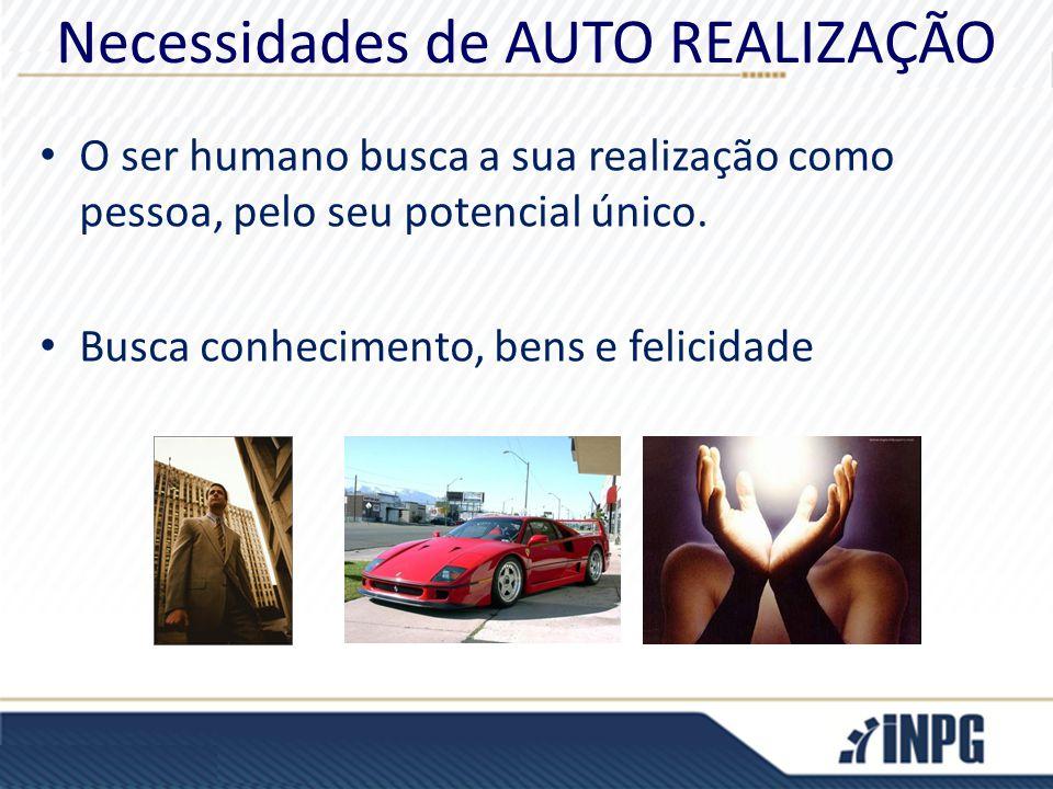 Necessidades de AUTO REALIZAÇÃO O ser humano busca a sua realização como pessoa, pelo seu potencial único. Busca conhecimento, bens e felicidade