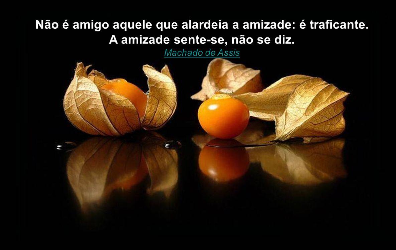 A verdadeira amizade é aquela que nos permite falar, ao amigo, de todos os seus defeitos e de todas as nossas qualidades. Millôr Fernandes