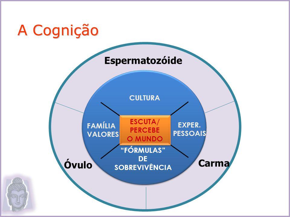 CULTURA FAMÍLIA VALORES ESCUTA/ PERCEBE O MUNDO ESCUTA/ PERCEBE O MUNDO EXPER. PESSOAIS FÓRMULAS DE SOBREVIVÊNCIA Espermatozóide Carma Óvulo A Cogniçã