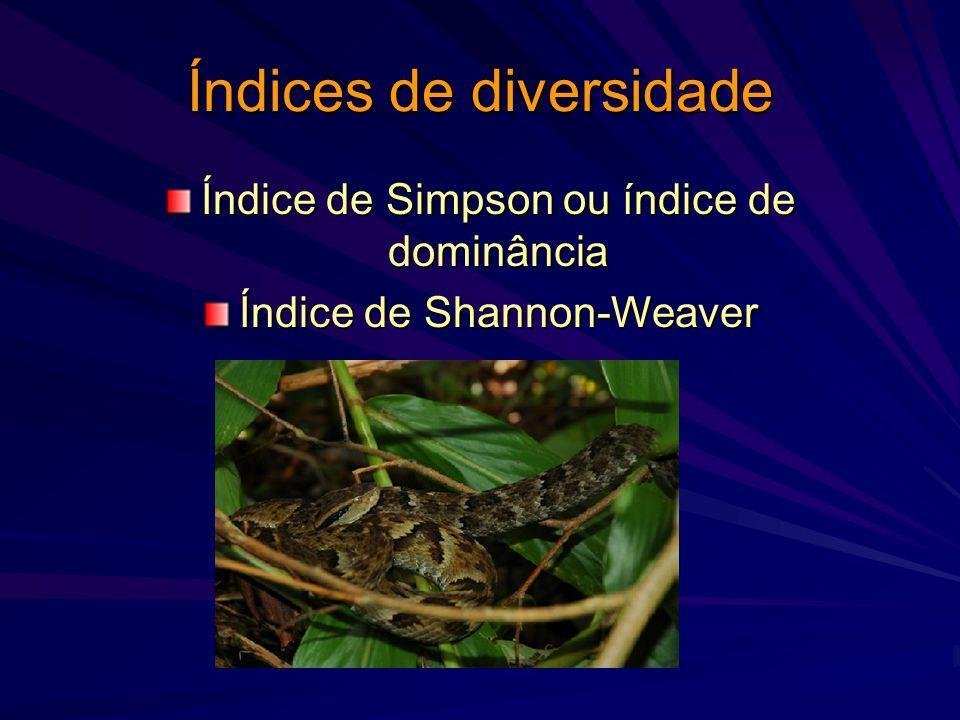 Conceitos: a diversidade ecológica no nível das espécies A diversidade é um dos principais componentes e descritores da estrutura das comunidades biol