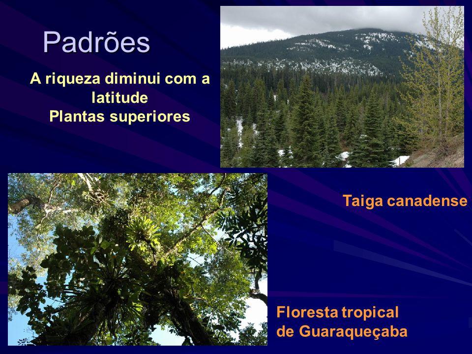 A diversidade biológica ou biodiversidade Padrões recorrentes de variação sugerem a existência de alguns princípios básicos reguladores da diversidade