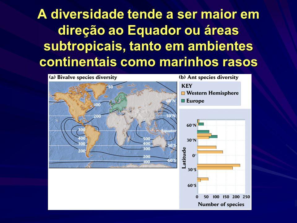A riqueza diminui com a latitude Plantas superiores Taiga canadense Floresta tropical de Guaraqueçaba Padrões