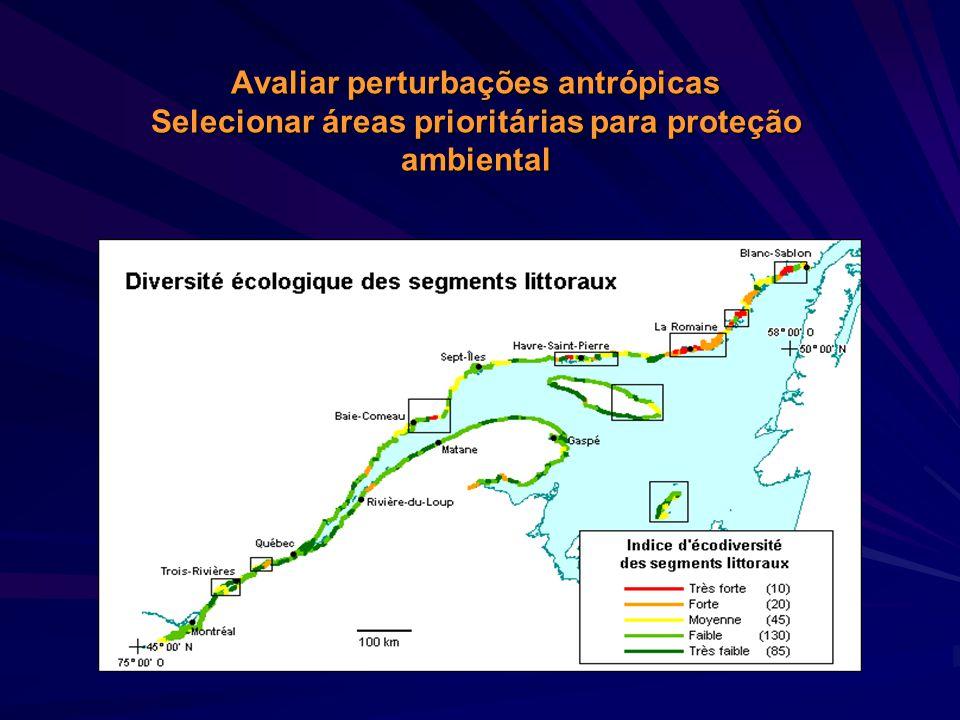A diversidade ecológica Riqueza e complexidade de uma região (diferentes comunidades, habitats, níveis tróficos, formas vegetativas, etc.)