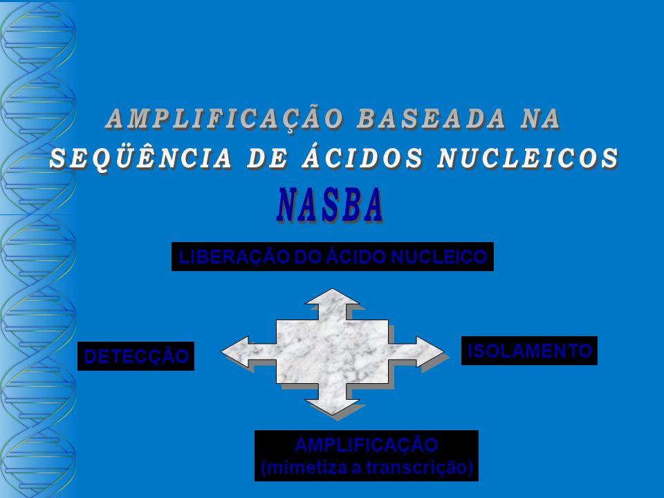 LIBERAÇÃO DO ÁCIDO NUCLEICO ISOLAMENTO AMPLIFICAÇÃO (mimetiza a transcrição) DETECÇÃO