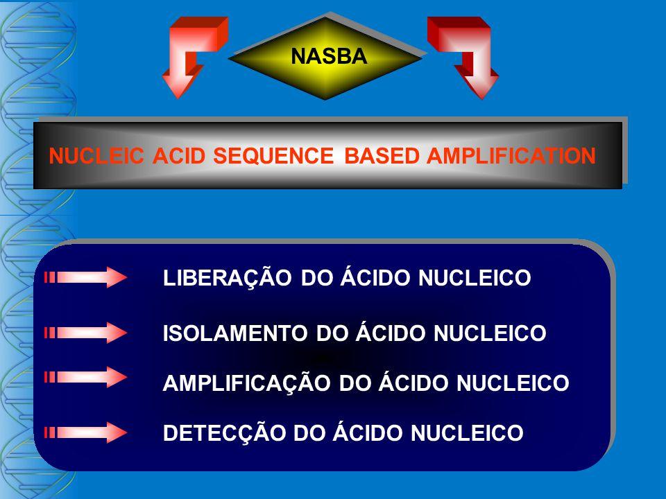 NASBA NUCLEIC ACID SEQUENCE BASED AMPLIFICATION DETECÇÃO DO ÁCIDO NUCLEICO LIBERAÇÃO DO ÁCIDO NUCLEICO ISOLAMENTO DO ÁCIDO NUCLEICO AMPLIFICAÇÃO DO ÁCIDO NUCLEICO