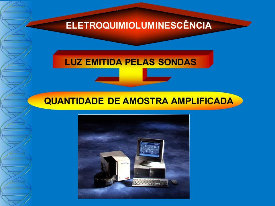 ELETROQUIMIOLUMINESCÊNCIA LUZ EMITIDA PELAS SONDAS QUANTIDADE DE AMOSTRA AMPLIFICADA