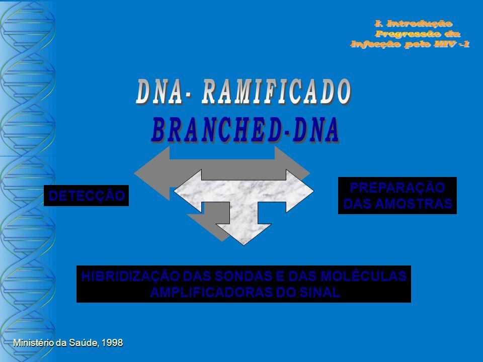 PREPARAÇÃO DAS AMOSTRAS HIBRIDIZAÇÃO DAS SONDAS E DAS MOLÉCULAS AMPLIFICADORAS DO SINAL DETECÇÃO Ministério da Saúde, 1998