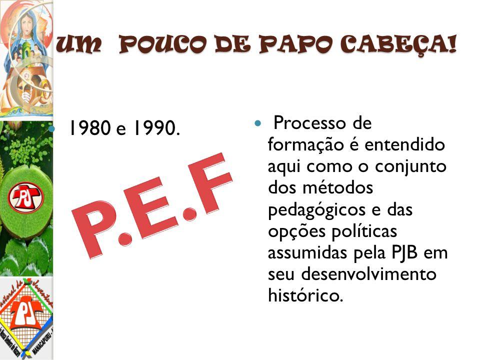UM POUCO DE PAPO CABEÇA! 1980 e 1990. Processo de formação é entendido aqui como o conjunto dos métodos pedagógicos e das opções políticas assumidas p