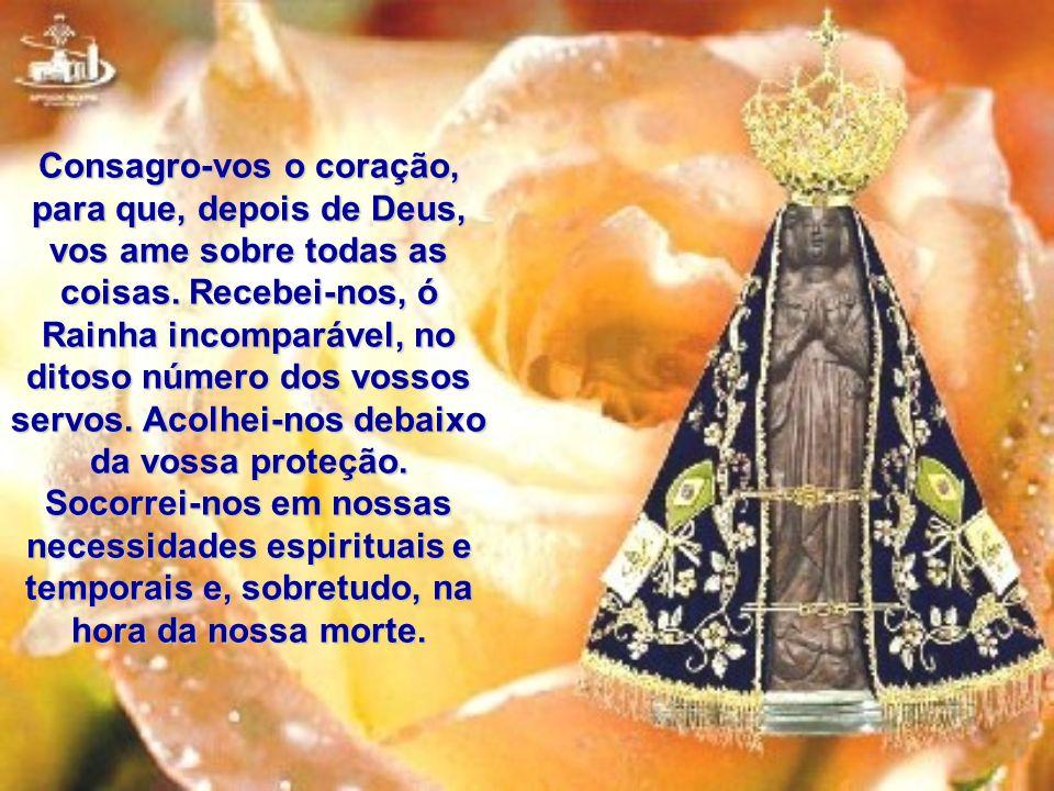 Ó Maria Santíssima, que em vossa imagem milagrosa de Aparecida espalhais inúmeros benefícios sobre o Brasil, eu, embora indigno de pertencer ao número