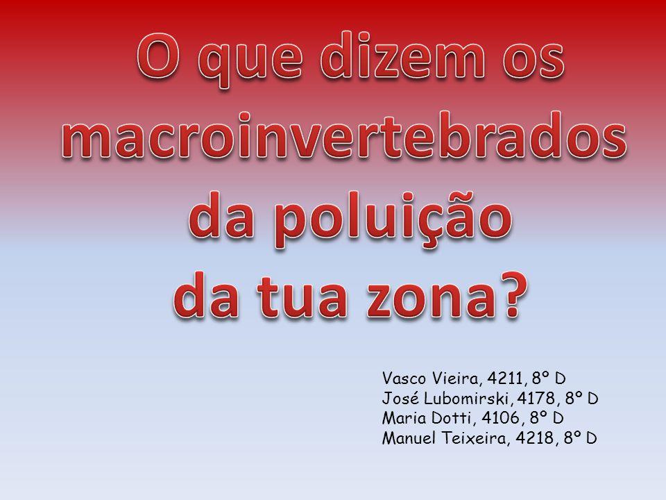 Vasco Vieira, 4211, 8º D José Lubomirski, 4178, 8º D Maria Dotti, 4106, 8º D Manuel Teixeira, 4218, 8º D