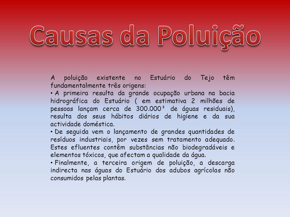 A poluição existente no Estuário do Tejo têm fundamentalmente três origens: A primeira resulta da grande ocupação urbana na bacia hidrográfica do Estu