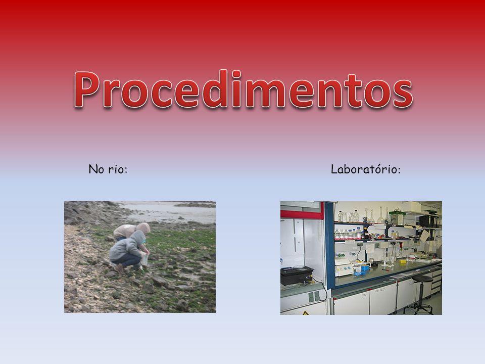 http://www.inag.pt/images/divulga/pdf/Macr oinvertebrados.pdf