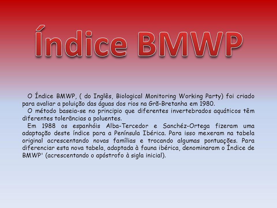 O Índice BMWP, ( do Inglês, Biological Monitoring Working Party) foi criado para avaliar a poluição das águas dos rios na Grã-Bretanha em 1980. O méto