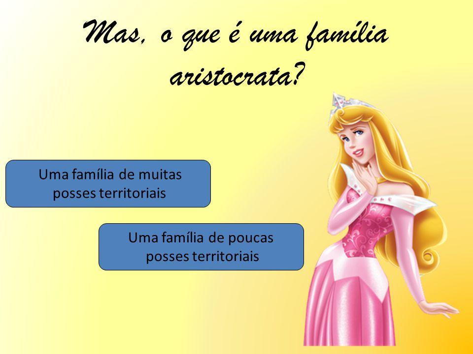 Mas, o que é uma família aristocrata? Uma família de muitas posses territoriais Uma família de poucas posses territoriais