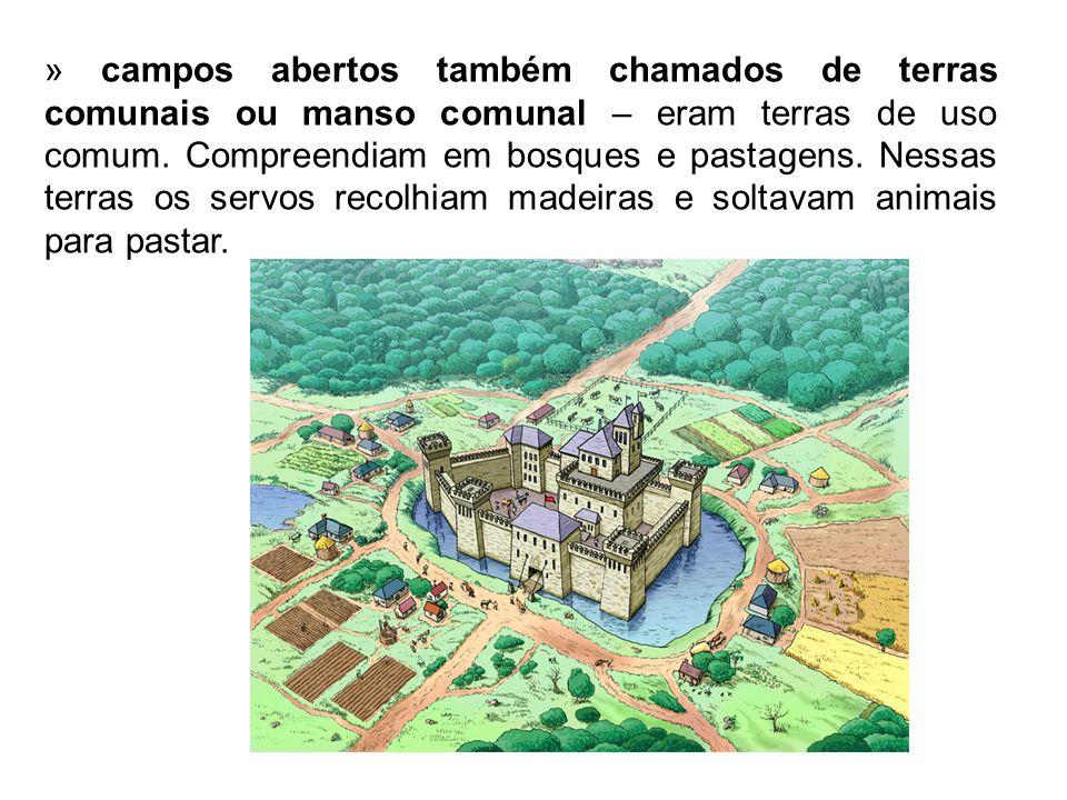» campos abertos também chamados de terras comunais ou manso comunal – eram terras de uso comum.
