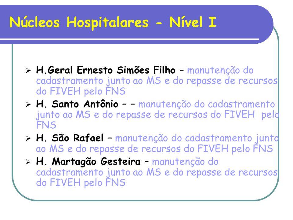 Núcleos Hospitalares - Nível I H.Geral Ernesto Simões Filho – manutenção do cadastramento junto ao MS e do repasse de recursos do FIVEH pelo FNS H.