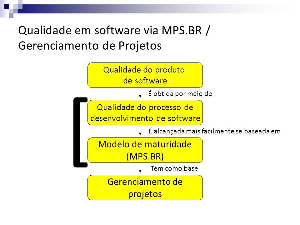Meta 1 Desenvolvimento e Aprimoramento do Modelo MPS Guias do MPS.BR Cursos, Provas e Workshops MPS.BR Instituições Implementadoras (II) Instituições Avaliadoras (IA) Consultores de Aquisição (CA)