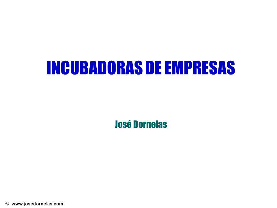 © www.josedornelas.com Parques Tecnológicos (Fonte: Anprotec) Áreas de Atuação