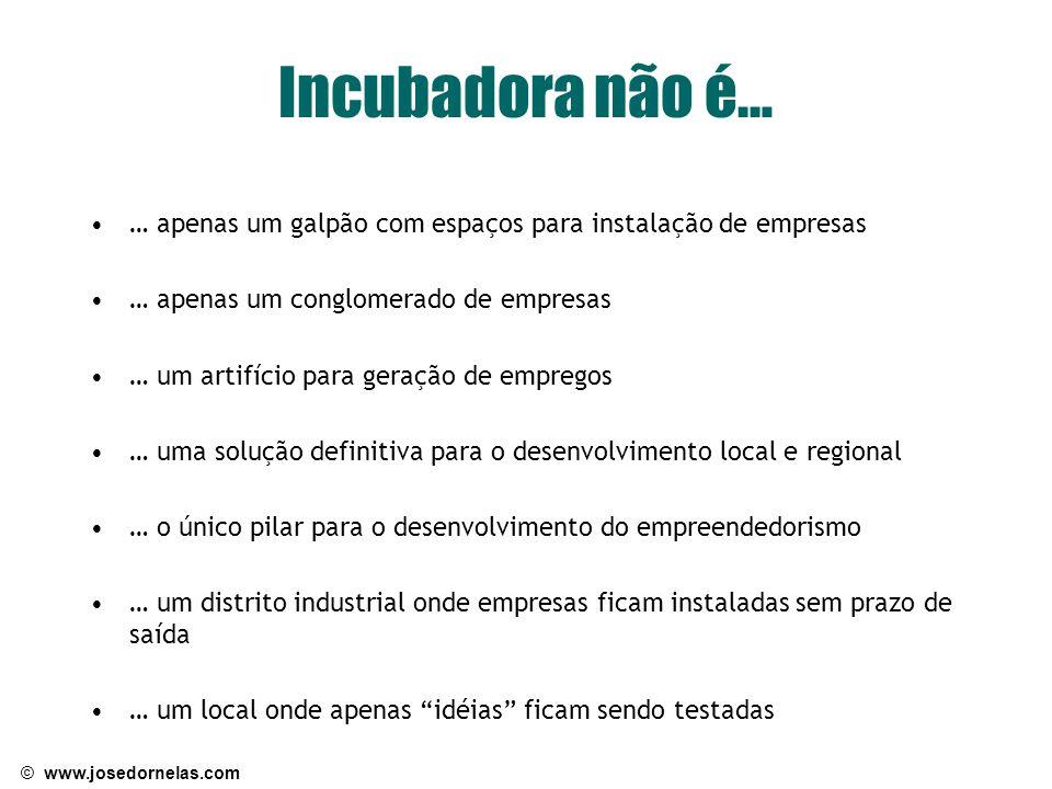 © www.josedornelas.com Incubadora não é… … apenas um galpão com espaços para instalação de empresas … apenas um conglomerado de empresas … um artifíci