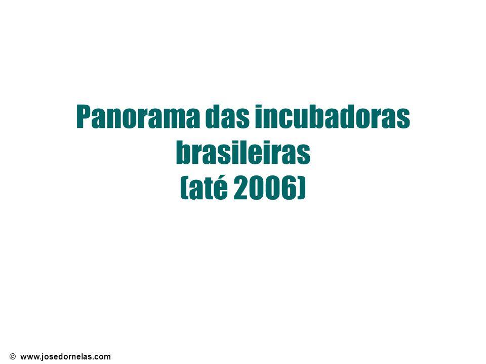 © www.josedornelas.com Panorama das incubadoras brasileiras (até 2006)