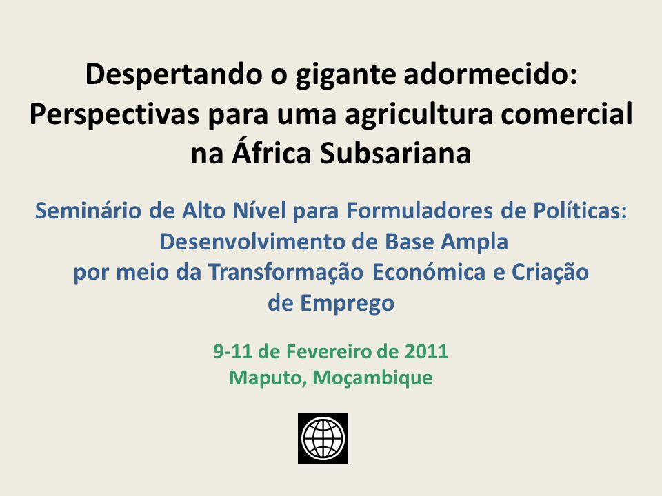 Despertando o gigante adormecido: Perspectivas para uma agricultura comercial na África Subsariana Seminário de Alto Nível para Formuladores de Políti