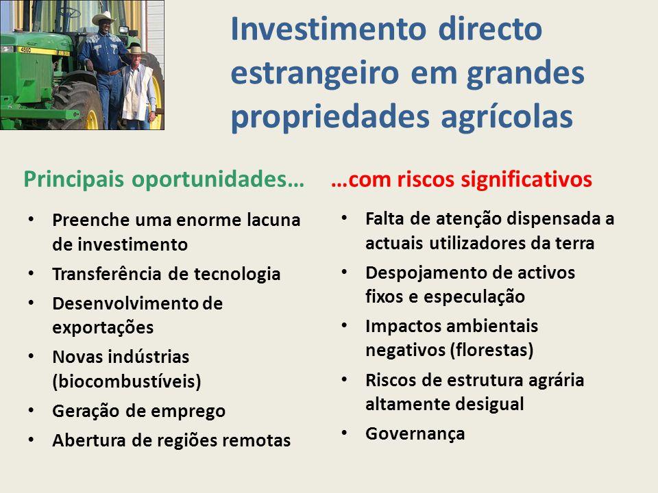Investimento directo estrangeiro em grandes propriedades agrícolas Principais oportunidades… …com riscos significativos Preenche uma enorme lacuna de
