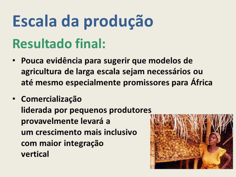 Escala da produção Resultado final: Pouca evidência para sugerir que modelos de agricultura de larga escala sejam necessários ou até mesmo especialmen