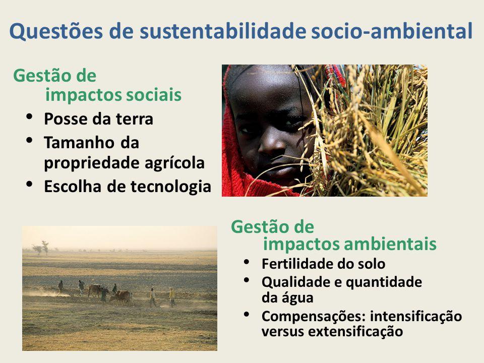 Questões de sustentabilidade socio-ambiental Gestão de impactos sociais Posse da terra Tamanho da propriedade agrícola Escolha de tecnologia Gestão de