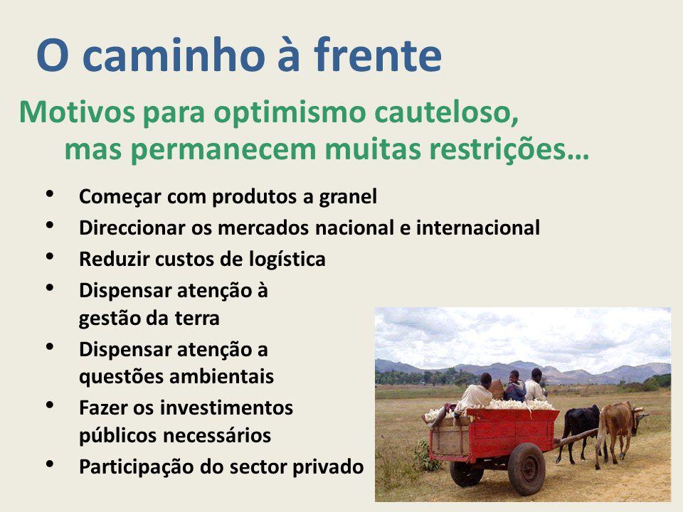 O caminho à frente Motivos para optimismo cauteloso, mas permanecem muitas restrições… Começar com produtos a granel Direccionar os mercados nacional