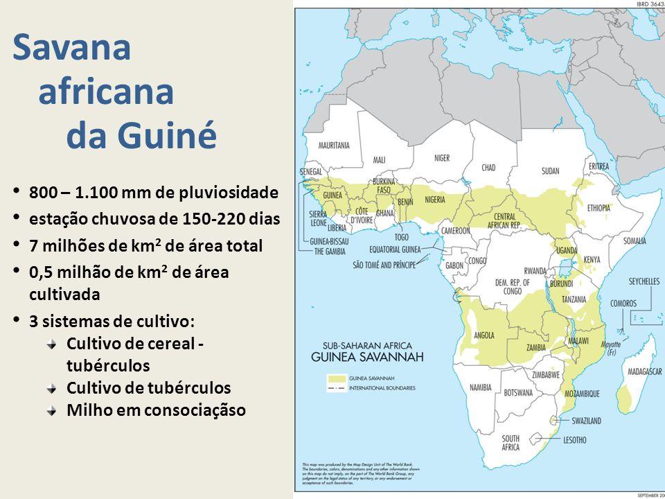 Savana africana da Guiné 800 – 1.100 mm de pluviosidade estação chuvosa de 150-220 dias 7 milhões de km 2 de área total 0,5 milhão de km 2 de área cul