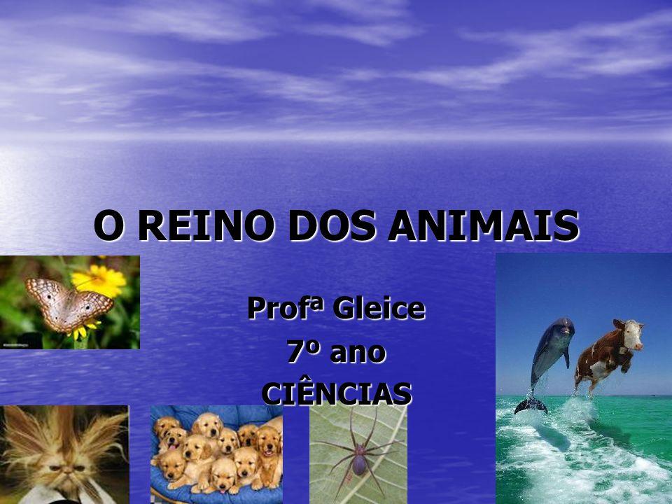 O REINO DOS ANIMAIS Profª Gleice 7º ano CIÊNCIAS