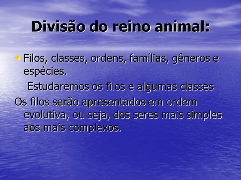 Divisão do reino animal: Filos, classes, ordens, famílias, gêneros e espécies. Filos, classes, ordens, famílias, gêneros e espécies. Estudaremos os fi