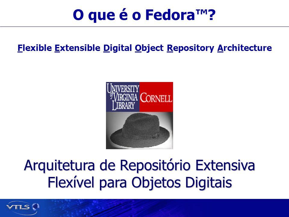 Visionary Technology in Library Solutions O que é um Repositório para Objetos Digitais.