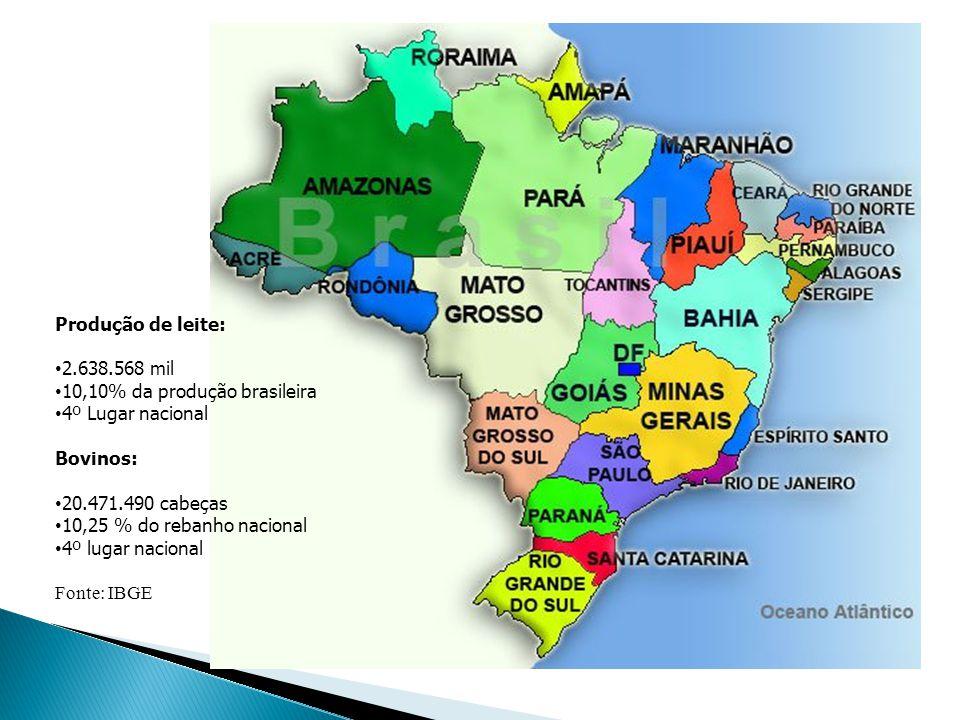 Produção de leite: 2.638.568 mil 10,10% da produção brasileira 4º Lugar nacional Bovinos: 20.471.490 cabeças 10,25 % do rebanho nacional 4º lugar naci